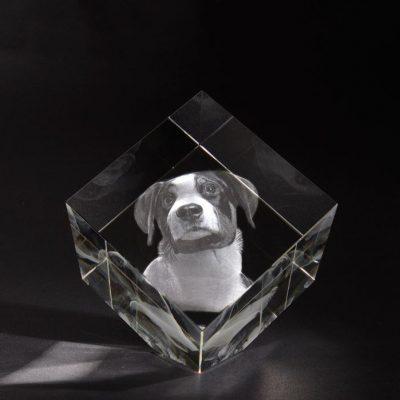 3D Glas Precious XL